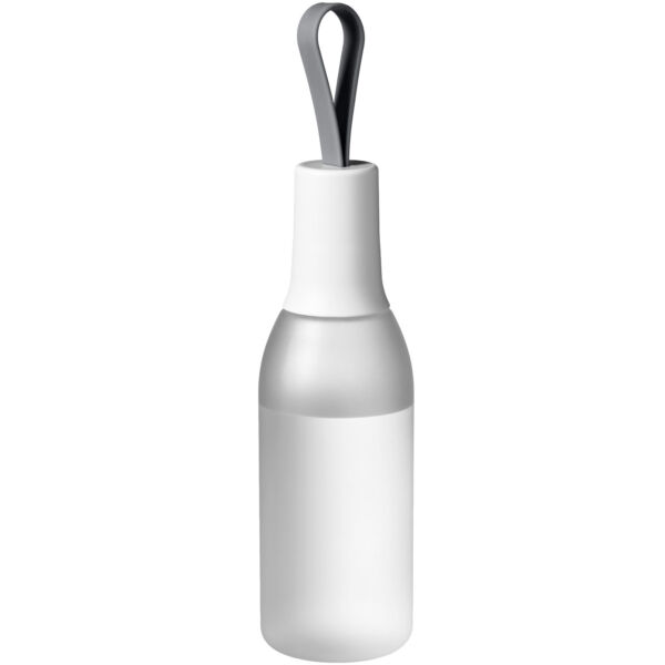 Flow 650 ml sport bottle with carrying strap (10030703)
