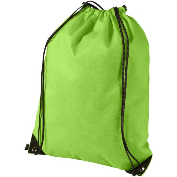 Evergreen non-woven drawstring backpack (11961906)