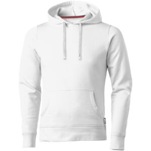 Alley hooded sweater (33238016)